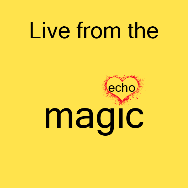 Magic echo logo